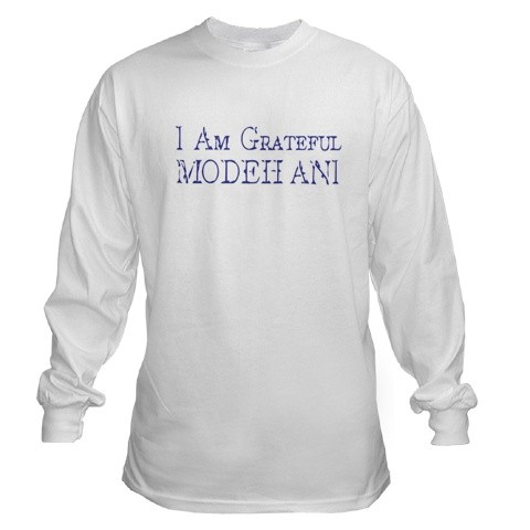 men's_long_sleeve_t_shirt